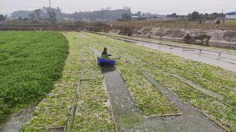 重庆市畜牧业协会考察畜禽养殖废弃物资源化利用模式