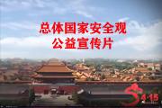 总体国家安全观公益宣传片
