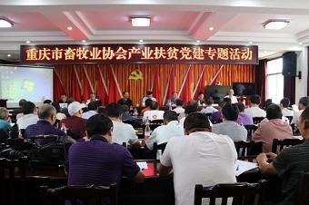 重庆市畜牧业协会2020年产业扶贫党建专题活动在万州区恒合乡圆满举办