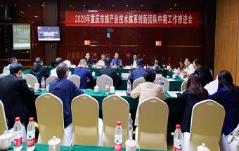 2020年重庆市蜂产业技术体系创新团队中期工作推进会顺利召开